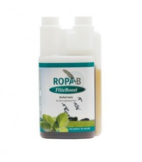 Ropa b flite boost (salud respiratoria aves)