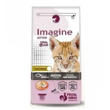 imagine cat kitten