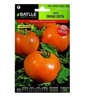 Tomate orange queen - semillas Batlle